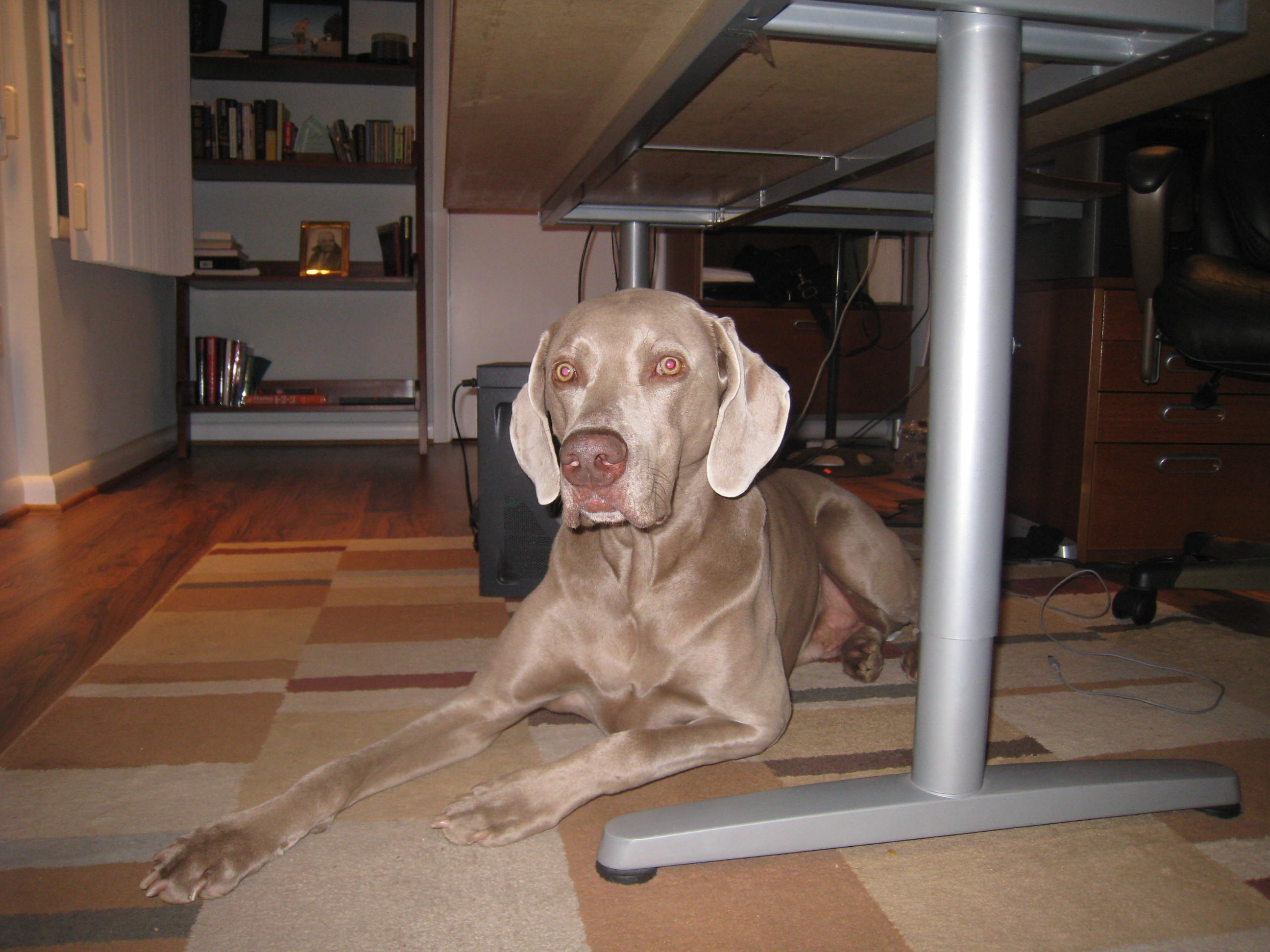 august-2009-caseys-40th-045